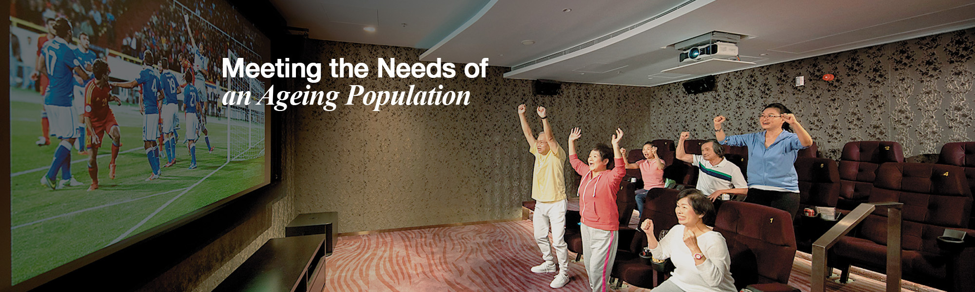 Meeting the Needs of an Ageing Population